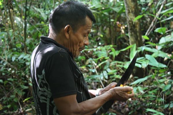 guayapi-nos-produits-epicerie-fine-muirapuama-producteur