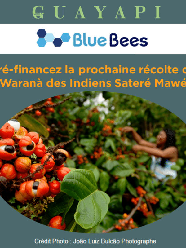 campagne pre finanacement warana bluebees
