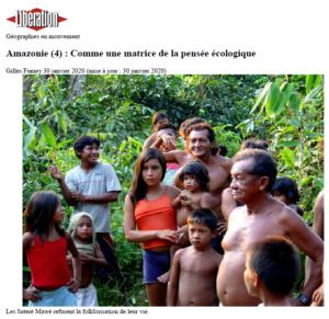 amazonie guayapi